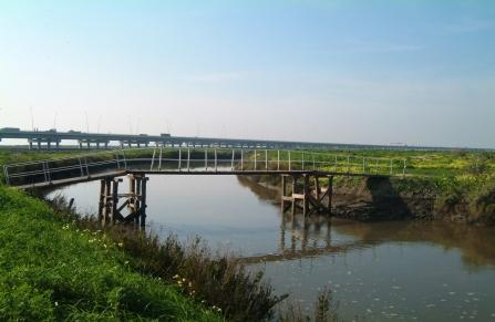 Ponte pedestre