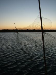 Redes para capturar limícolas